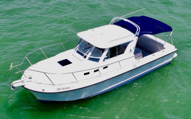 ALBIN 28 TE boston whaler COBIA grady WHITE SAILFISH trophy MAKO