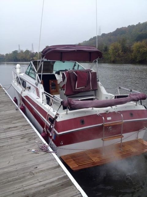 Wellcraft 260 Aft Cabin Cruiser With Trailer And All